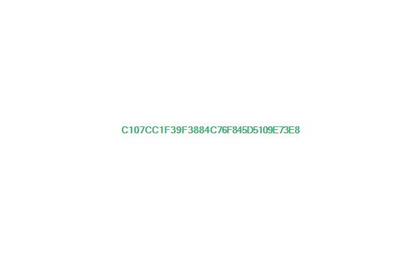 印度到缅甸的史迪威公路
